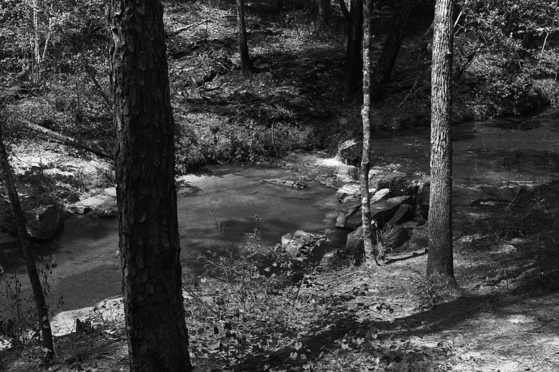 Tiny River.jpg