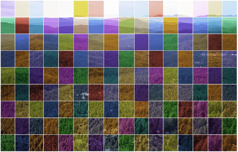 Color Grid #1