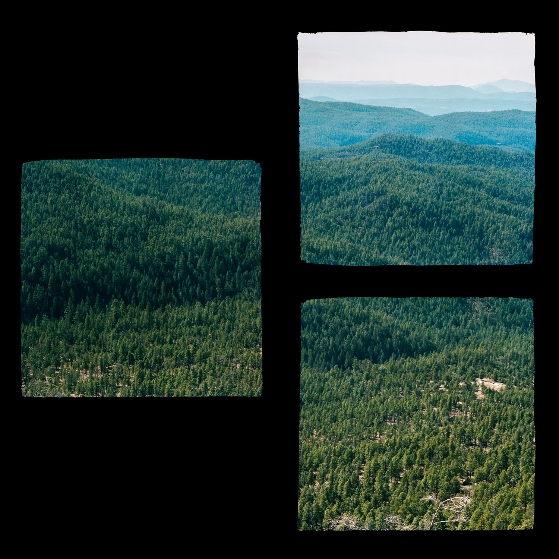 Fragmented Landscape #1