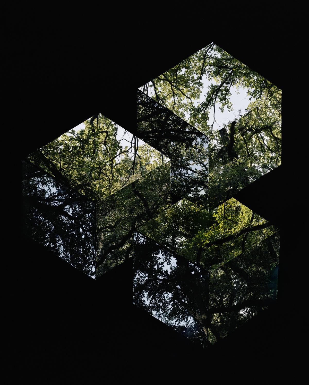Reutersvard cubes.jpg