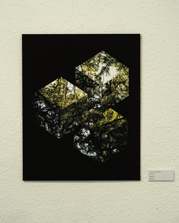 "Reutersvärd Cubes , 2015  Digital Inkjet Print  19.2""x24"""