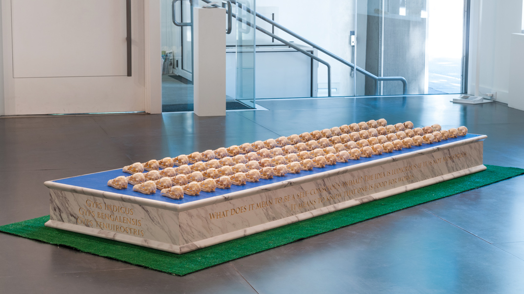 Be Merry,  2016 Formica marble, blue tarp, 97 ABS vulture skulls, artificial grass 114 x 46 x 10 inches (approximately)