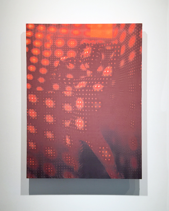 OpticNude.02 , 2016 50 mm taffeta silk with dye transfer of 3D rendering 46 x 36 inches, edition of 3 + 1 AP