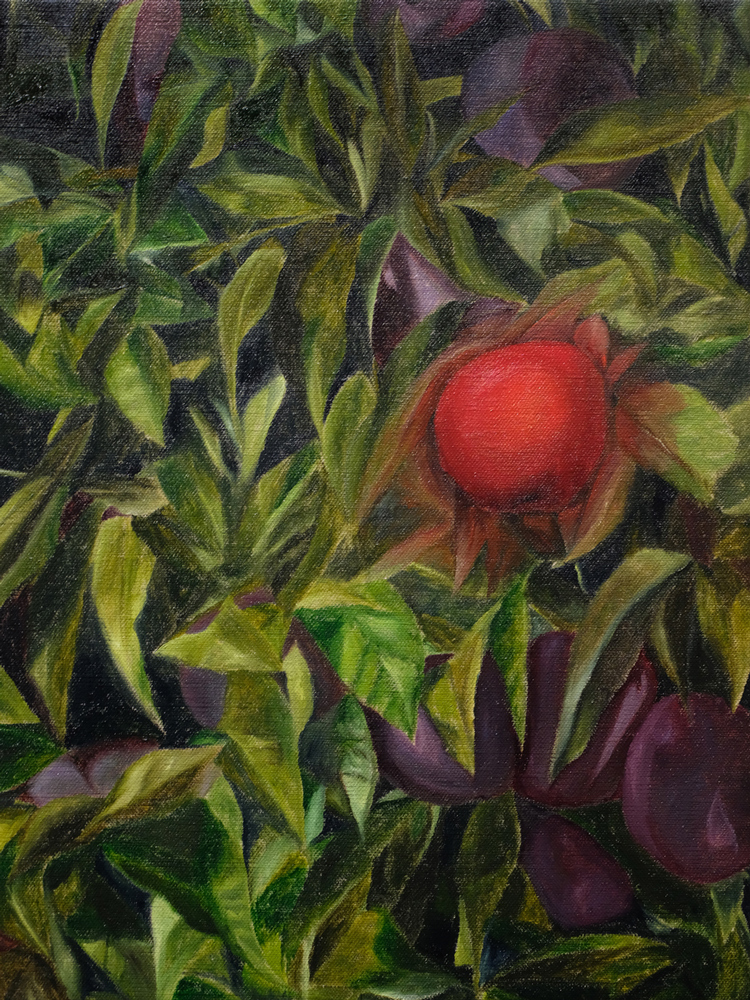 Apple , 2018 oil paint on linen 16 x 12 inches