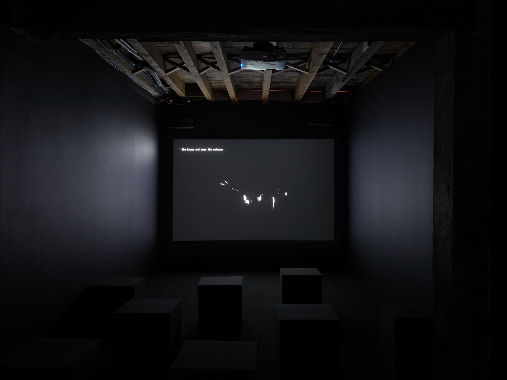 Morehshin Allahyari video in  Refiguring Binaries  at Pioneer Works, New York