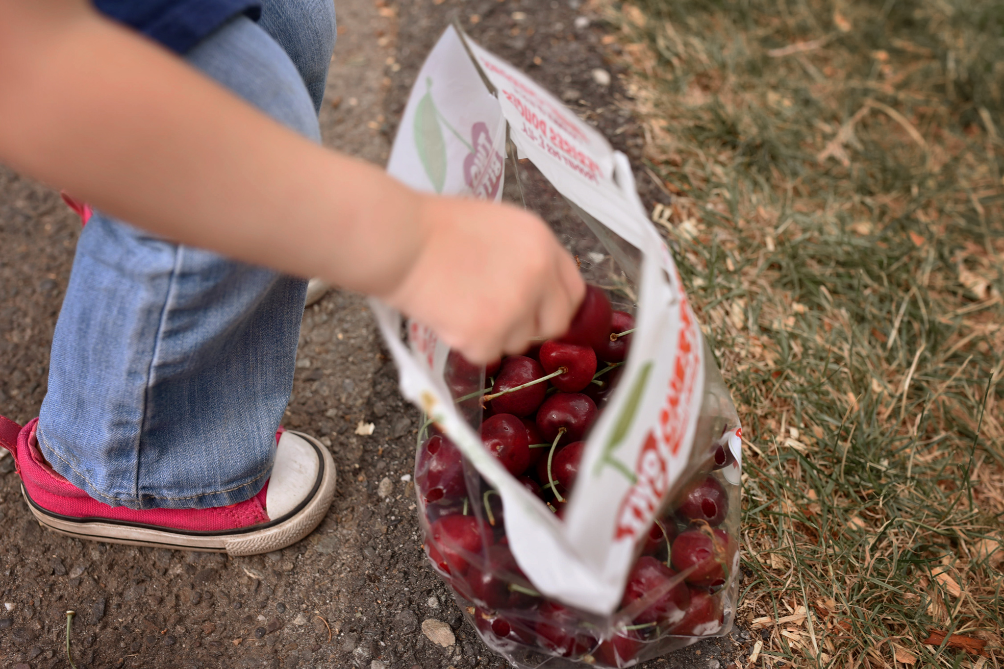 day 20 {a bag of cherries}