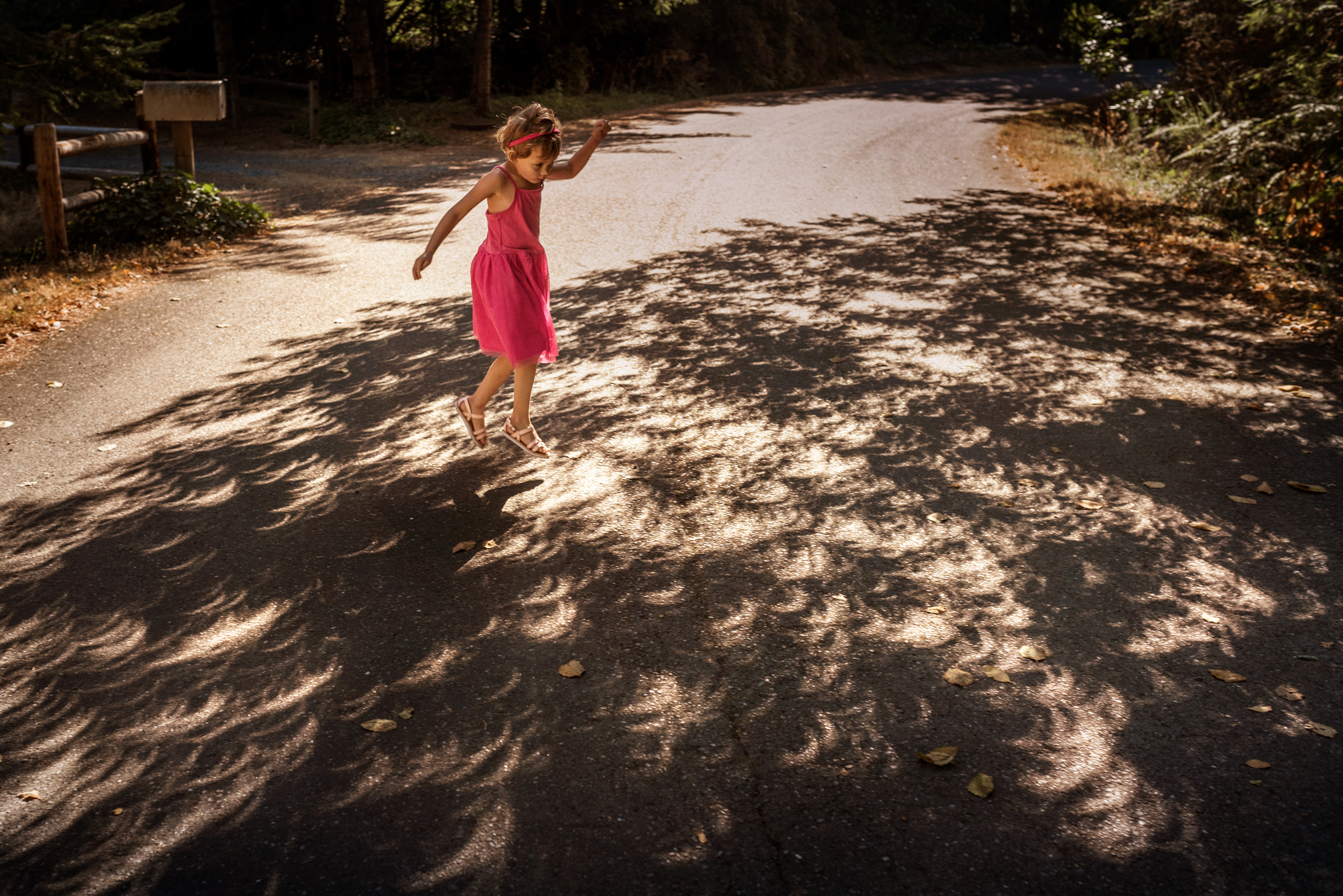 day 21 {dancing with the shadows}  click here see more photos of the eclipse