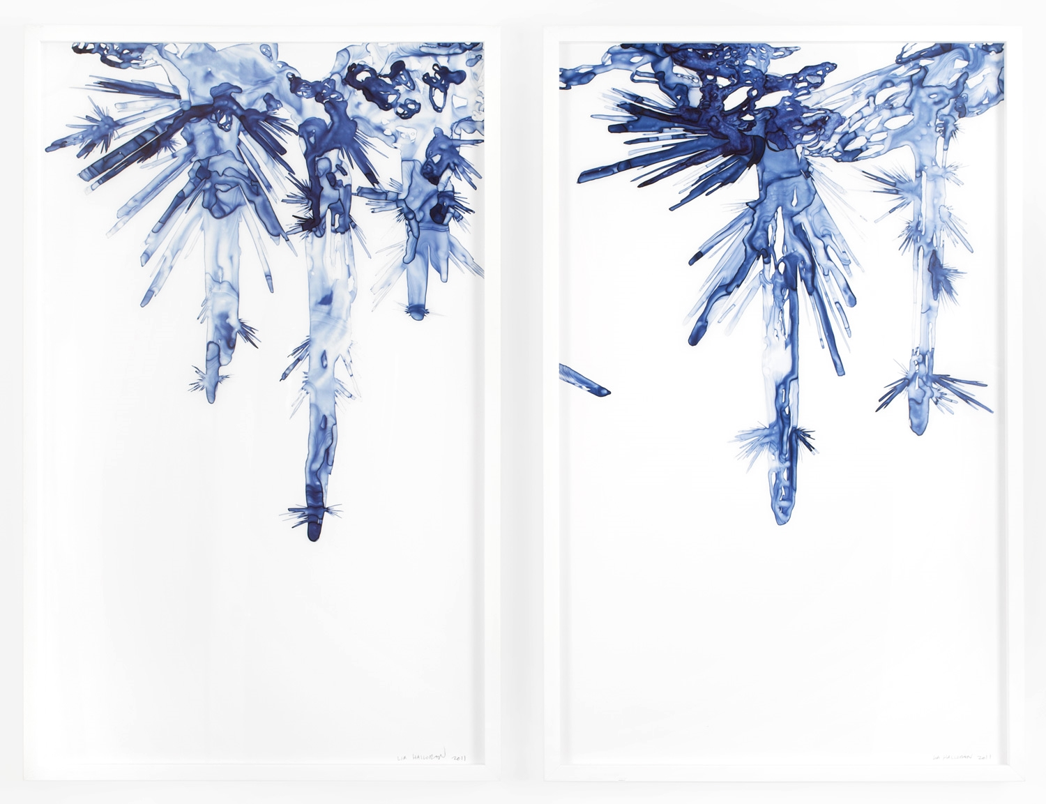 Hanging Crystalline Forms I & II  2011 Ink on drafting film, 40 x 25 inches each