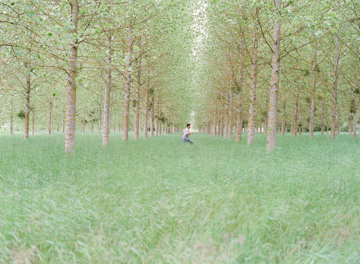 loire valley-13.jpg