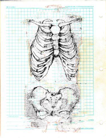 Elizabeth Pelley ,  Torso Study  (digital collage of pencil sketch)