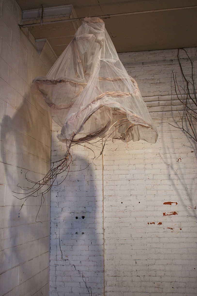 Shannon Estlund ,  Midnight's Children  (found clothing, tulle, vines, tree, branches)