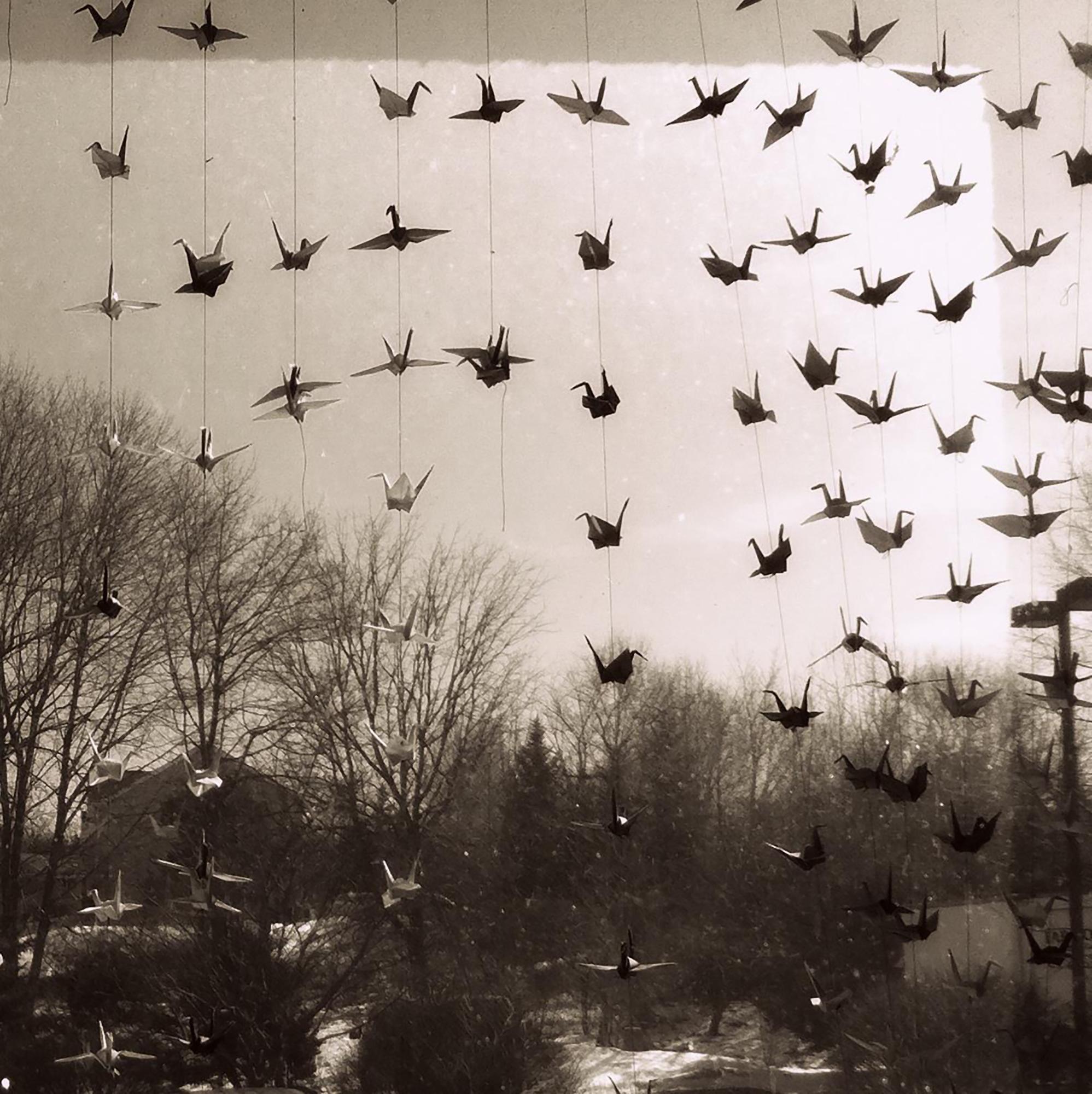 Paul Bilger,  Paper Cranes  (digital photograph)