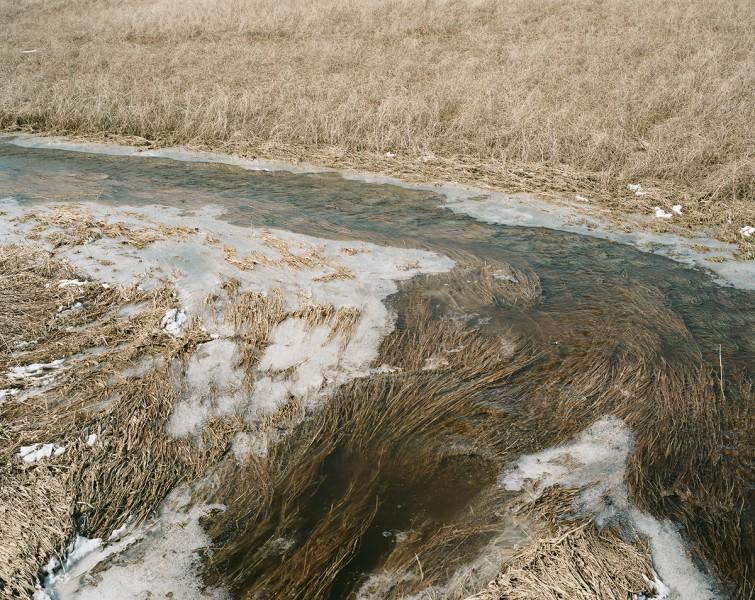 Lise Latreille , Ugly River (color photograph)