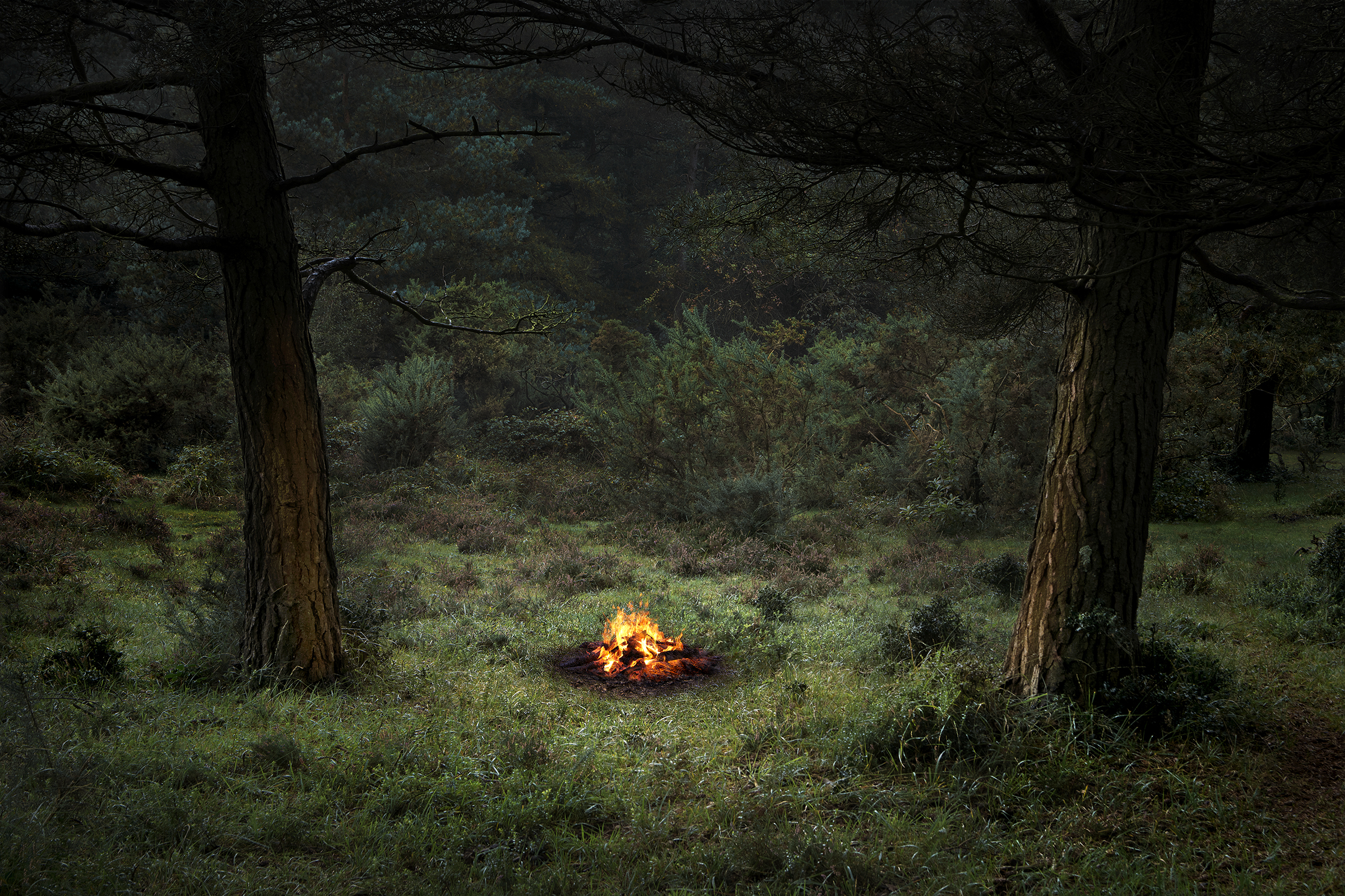Ellie Davies ,  Fire 4 , 2018 ( Artist Website ) C-Type lightjet print on Fuji crystal archive paper