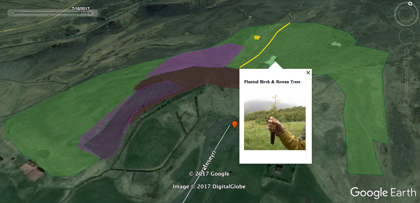 Hfranseyri Tree Planting 2017
