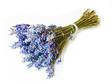 184863_lavender_bouquet_2.jpg