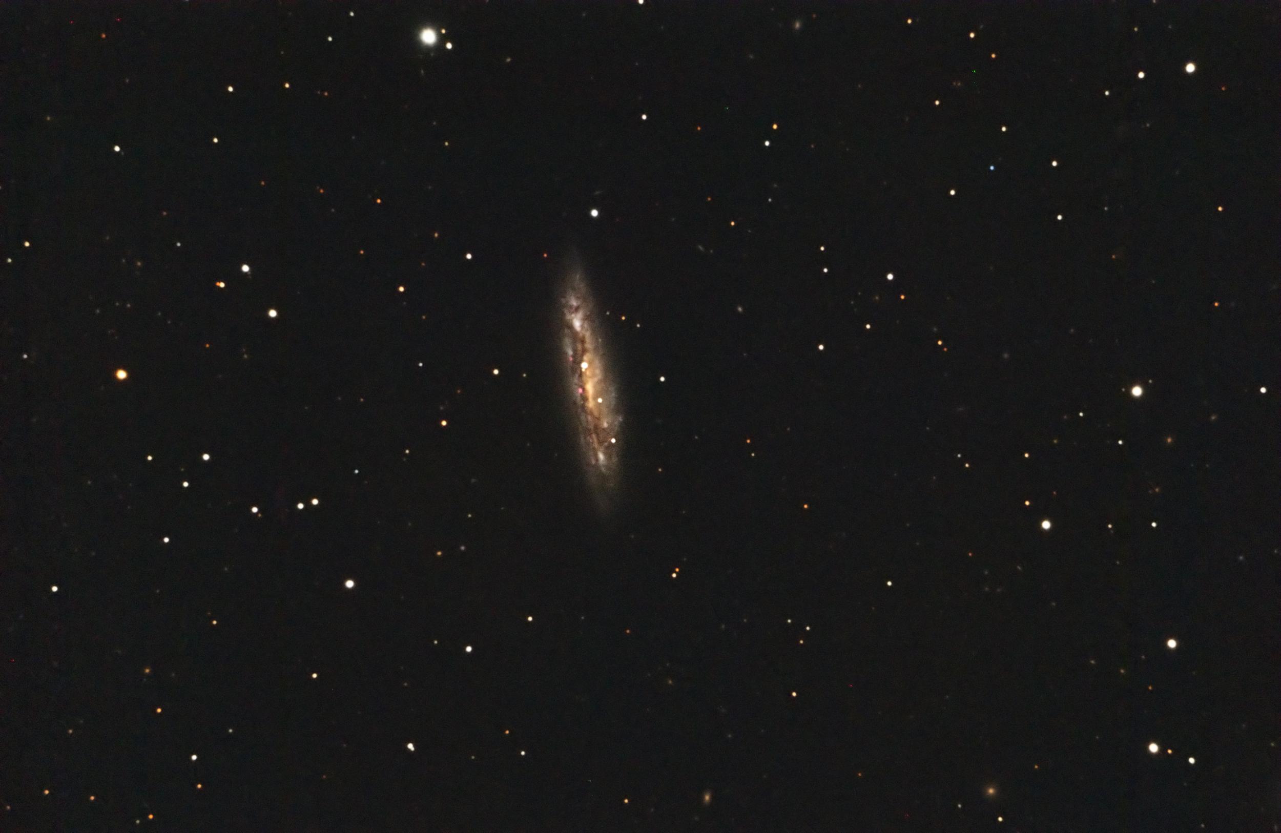M108 (NGC 3556)
