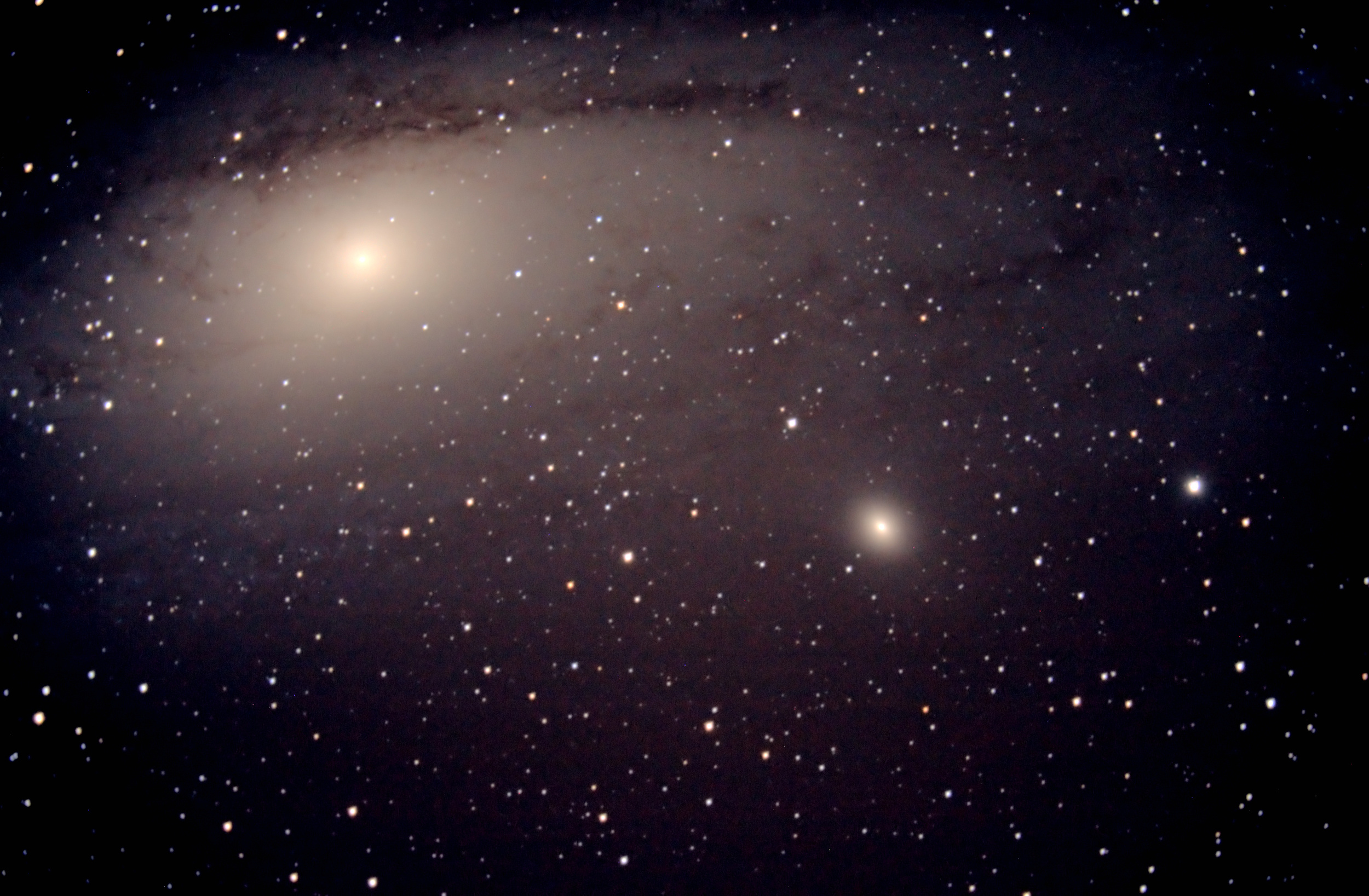 Andromeda Galaxy (M31,M101)