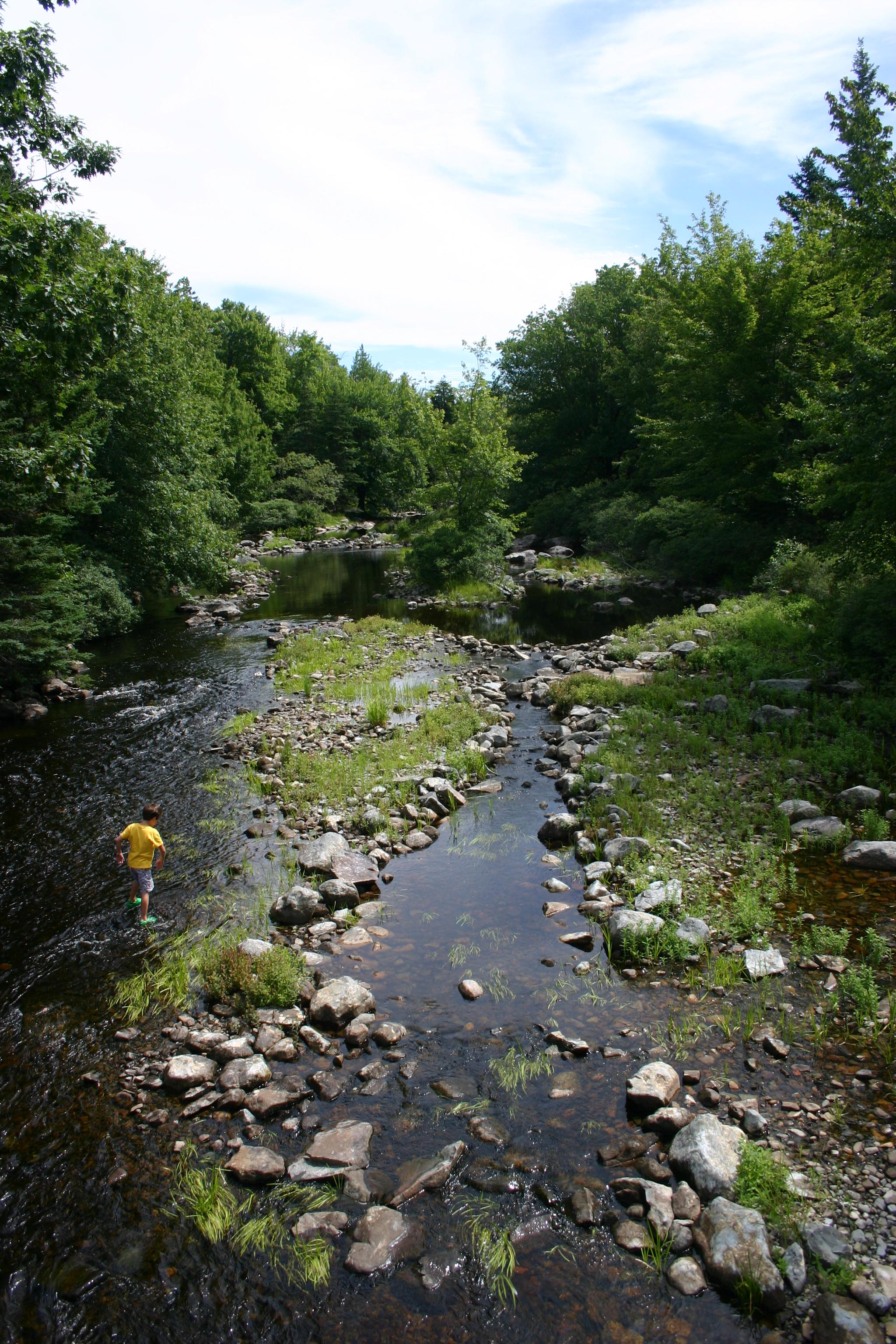 Kekoujouke River (looking East)