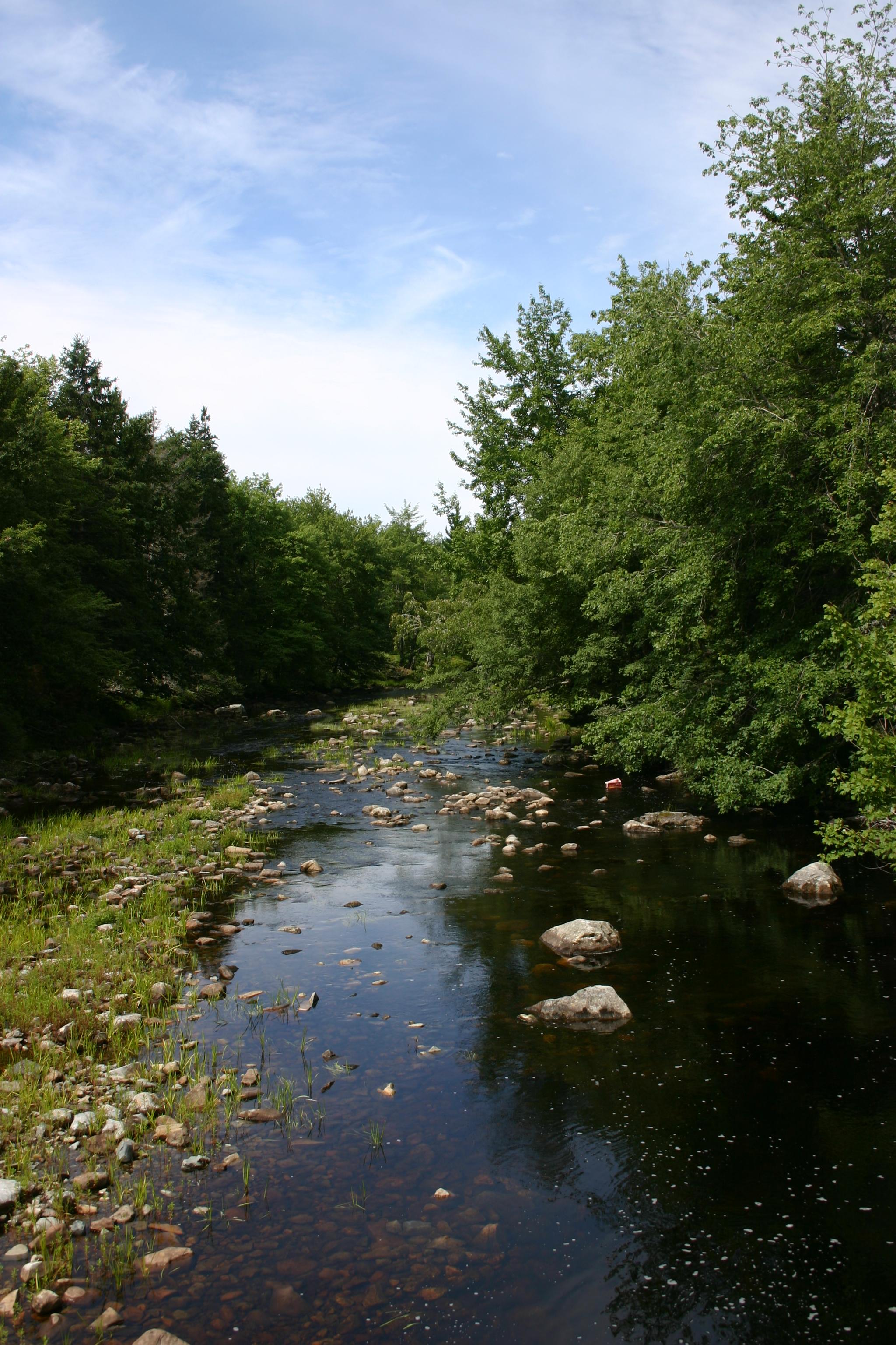Kekoujouke River (looking West)