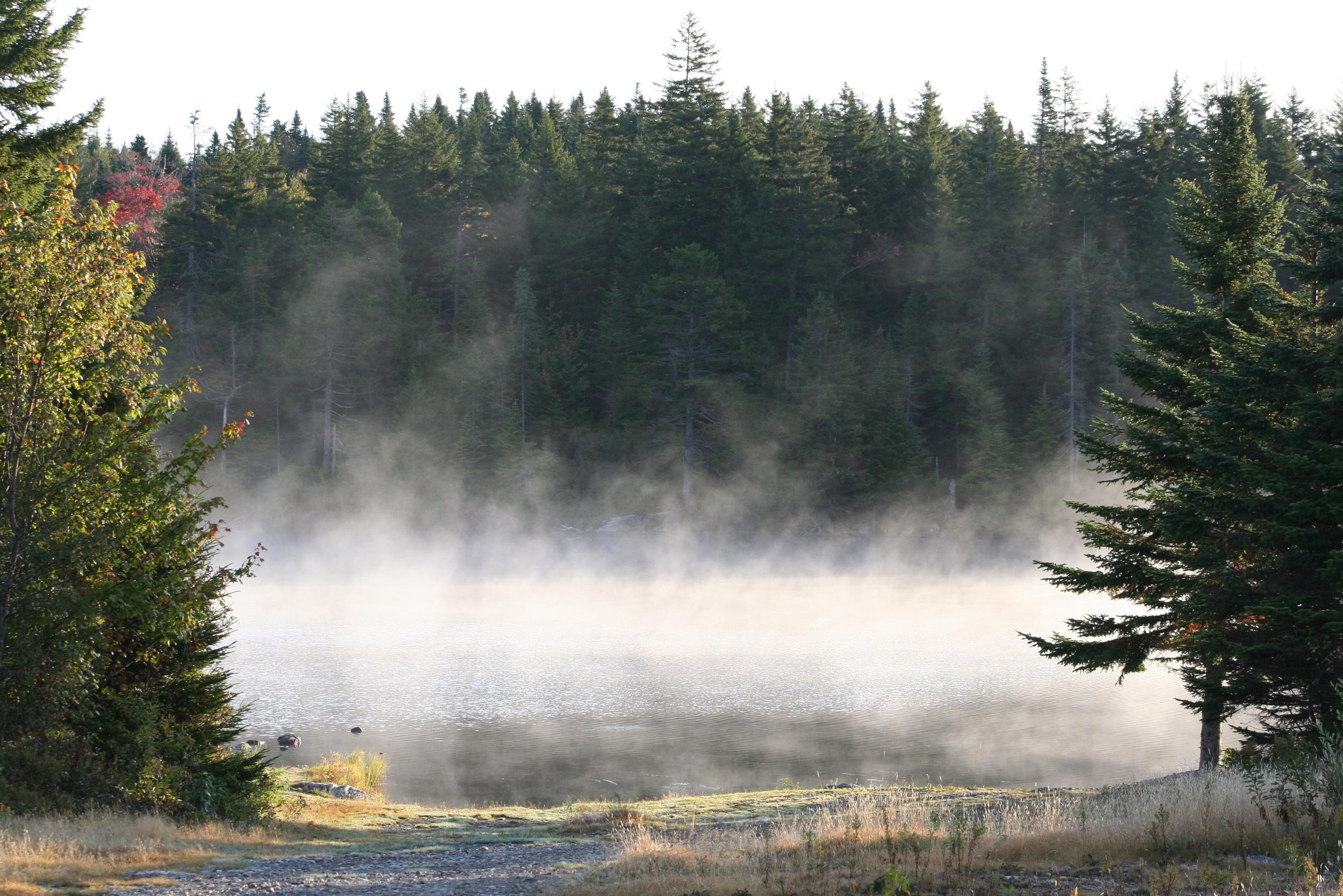 Livingston Lake Mist