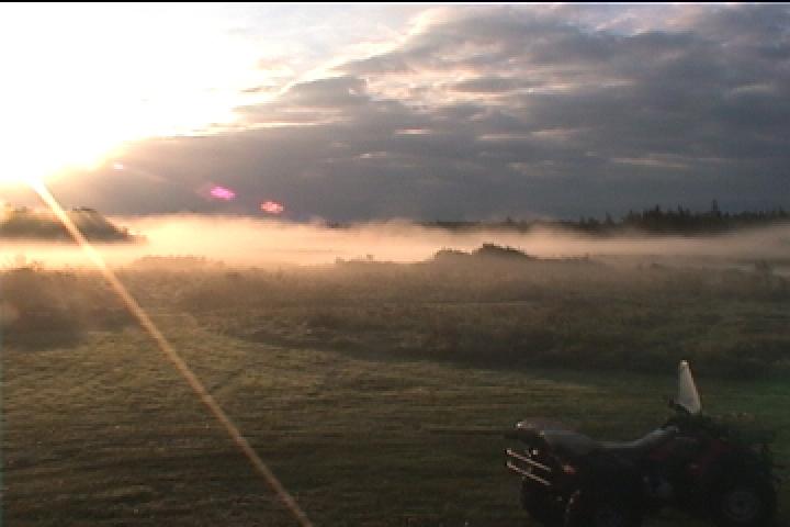 Morning Misty River
