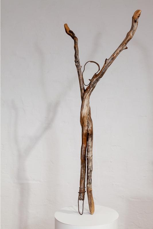 Irons Newfoundland driftwood 94 x 40 x 8 cm, 2011 - 12
