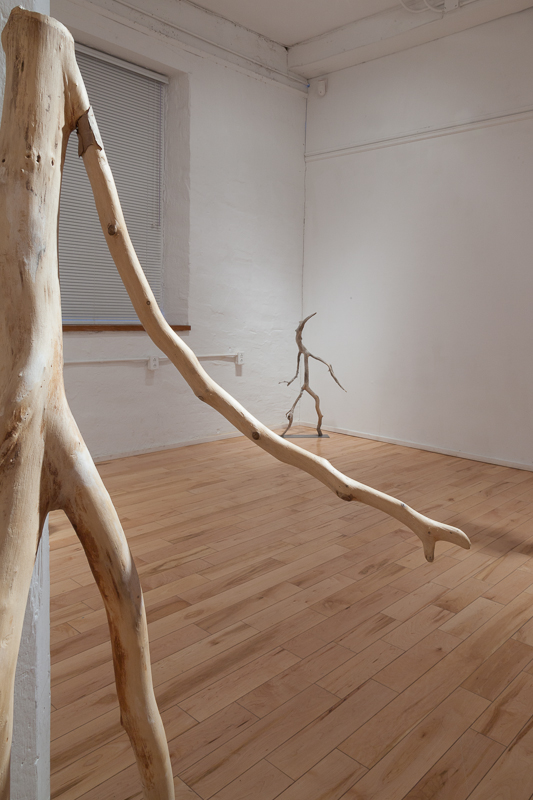 Salut, 2009 Lake Ontario driftwood,70 x 25 x 28 cm