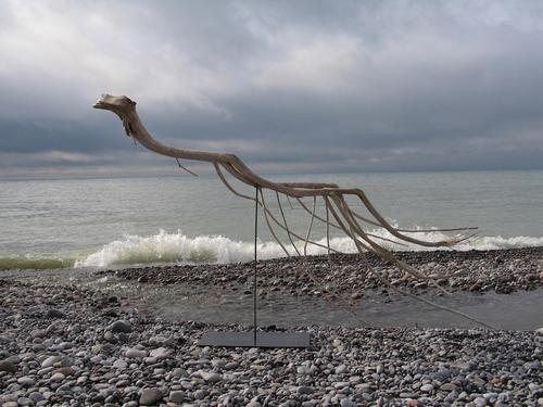SALLY THURLOW  Swimmer , 2012. Lake Ontario driftwood, 58 x 94 x 29 inches.