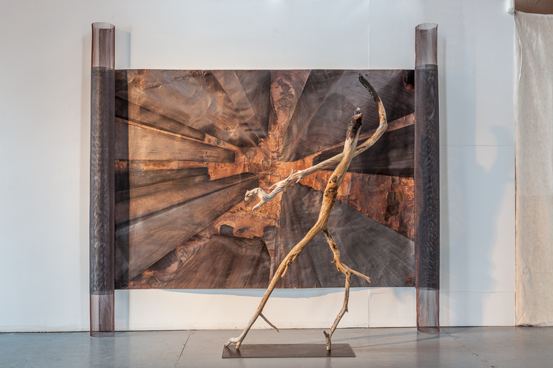Burned, 2011Newfoundland & Lake Ontario driftwood200 x 110 x 30 cm  with Bay & King Collective Unconscious 250 x 280 x 20 cm, 1994
