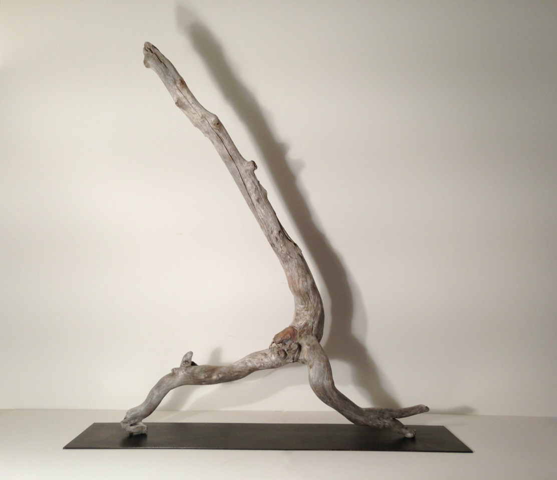 Strider  2014 NL driftwood on steel plinth, 49 x 40 x 12 inches. Stands on a steel base on the floor.