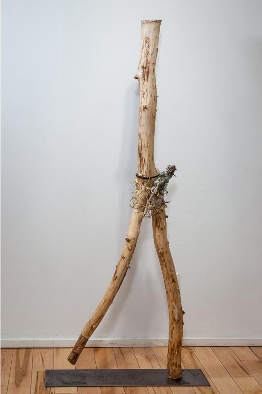 SALLY THURLOW,  Josephine, 2011 Lake Ontario driftwood, 165 x 54 x 12 cm