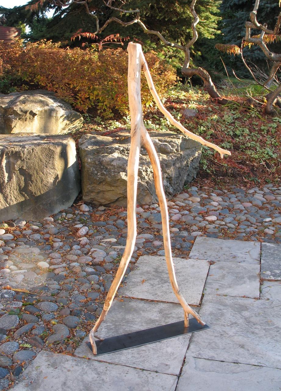 SALLY THURLOW,  No Bones , 2009 Lake Ontario driftwood, 133 x 60 x 42 cm