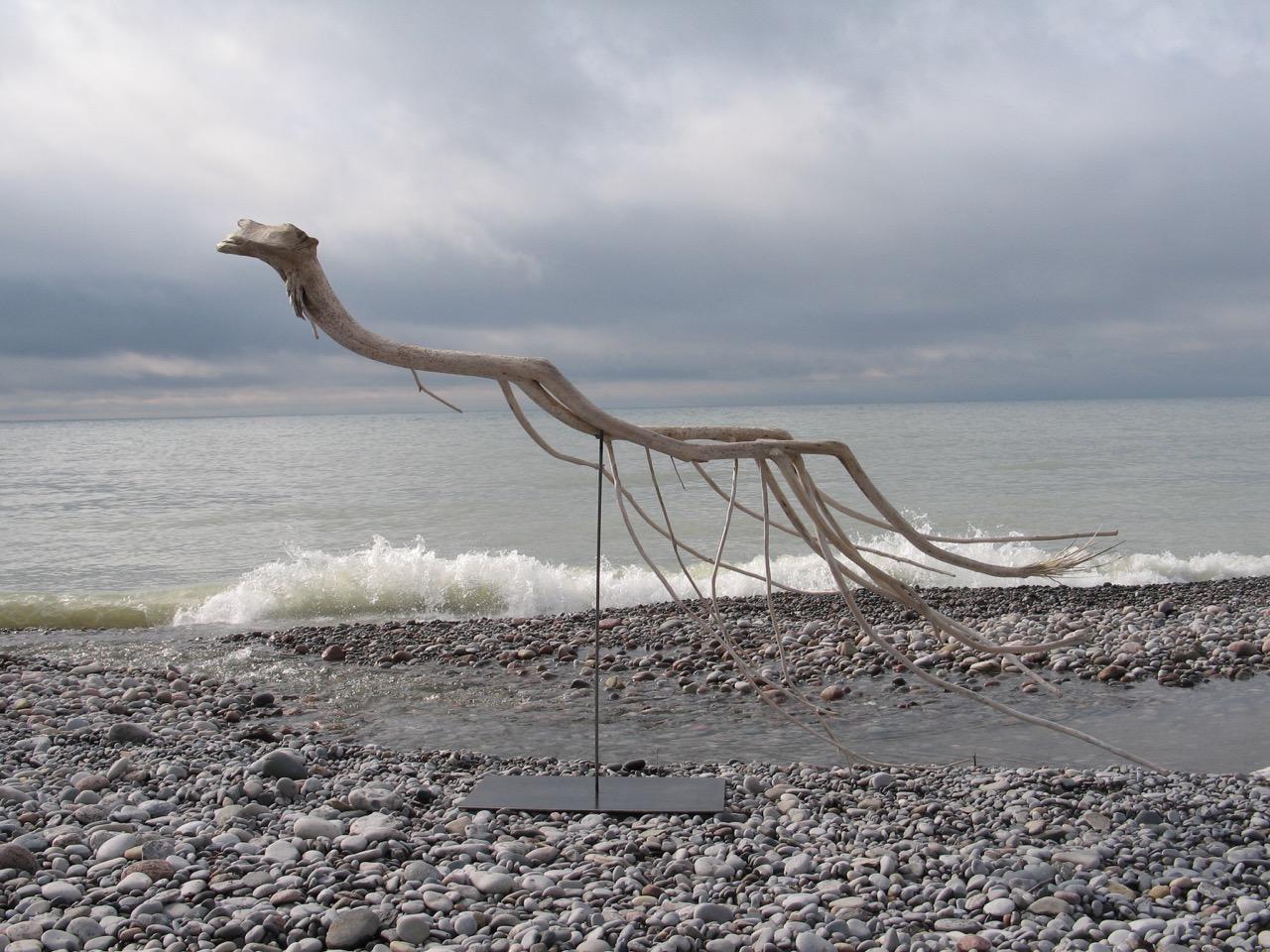 SALLY THURLOW,  Swimmer, 2011-12  Lake Ontario Driftwood, 148 x 240 x 74 cm