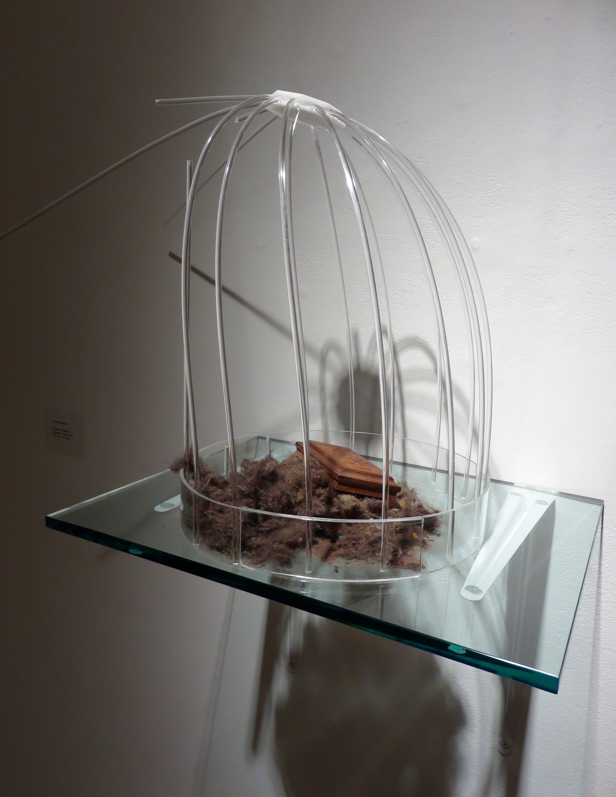 Dust to Dust, Vignette I,  2016 Plexiglass, wood, iRobot collected dust 22 x 16  x 11 inches