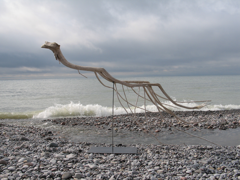 Swimmer, 2011-2012 Lake Ontario driftwood, 148 x 240 x 74