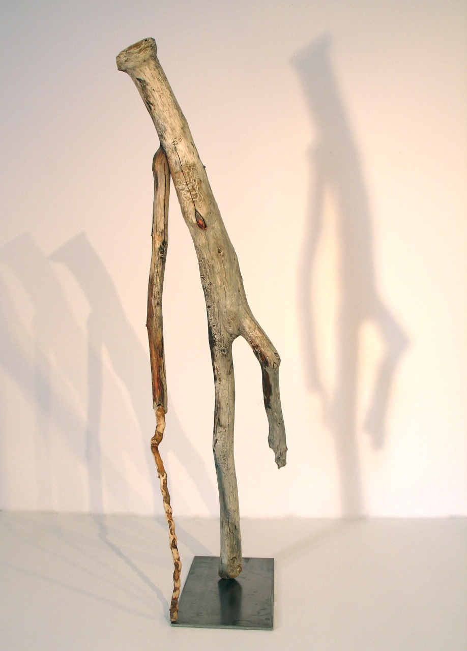 Walks With Cane, 2011 - 12, Newfoundland driftwood , 67 x 23 x 20 cm