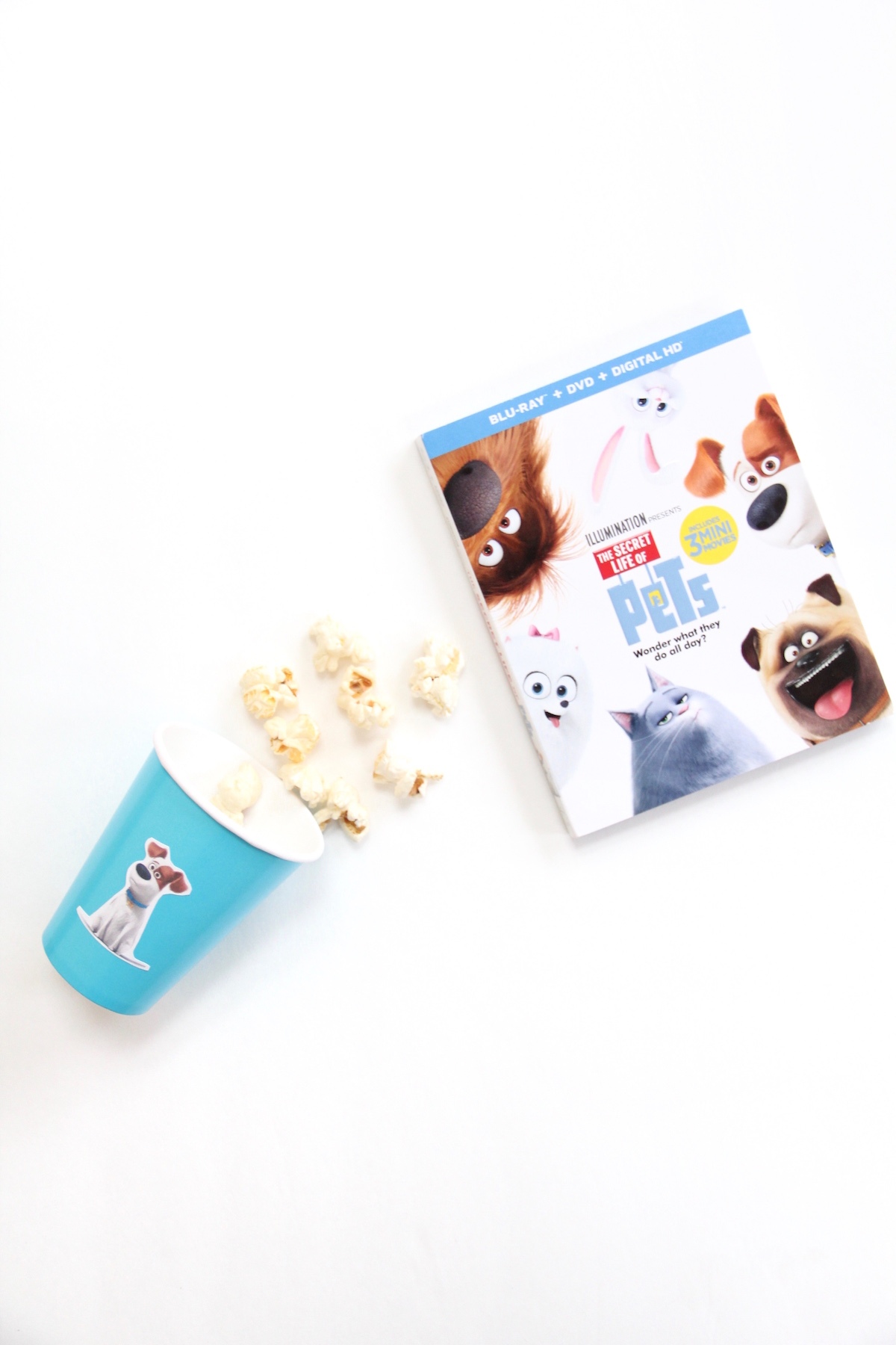 Secret Life of Pets Movie Party! | And We Play