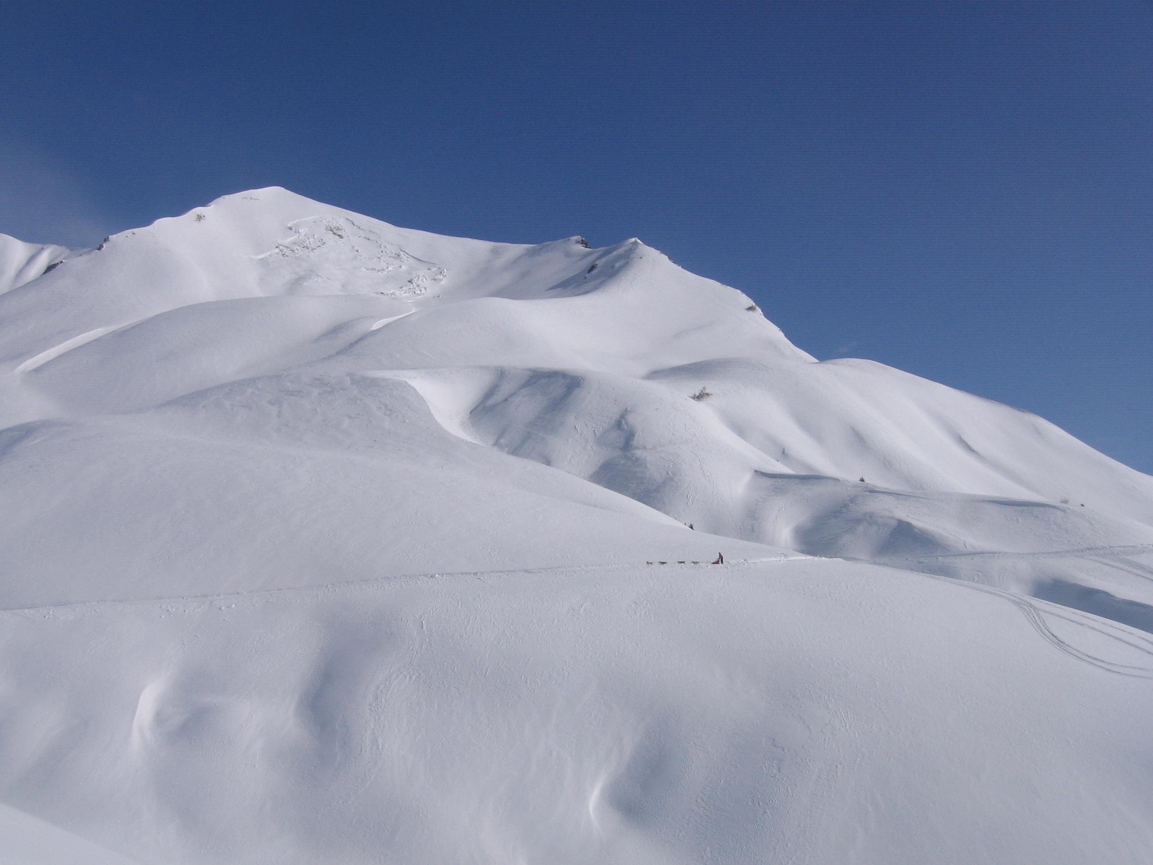 feb2010 039.jpg
