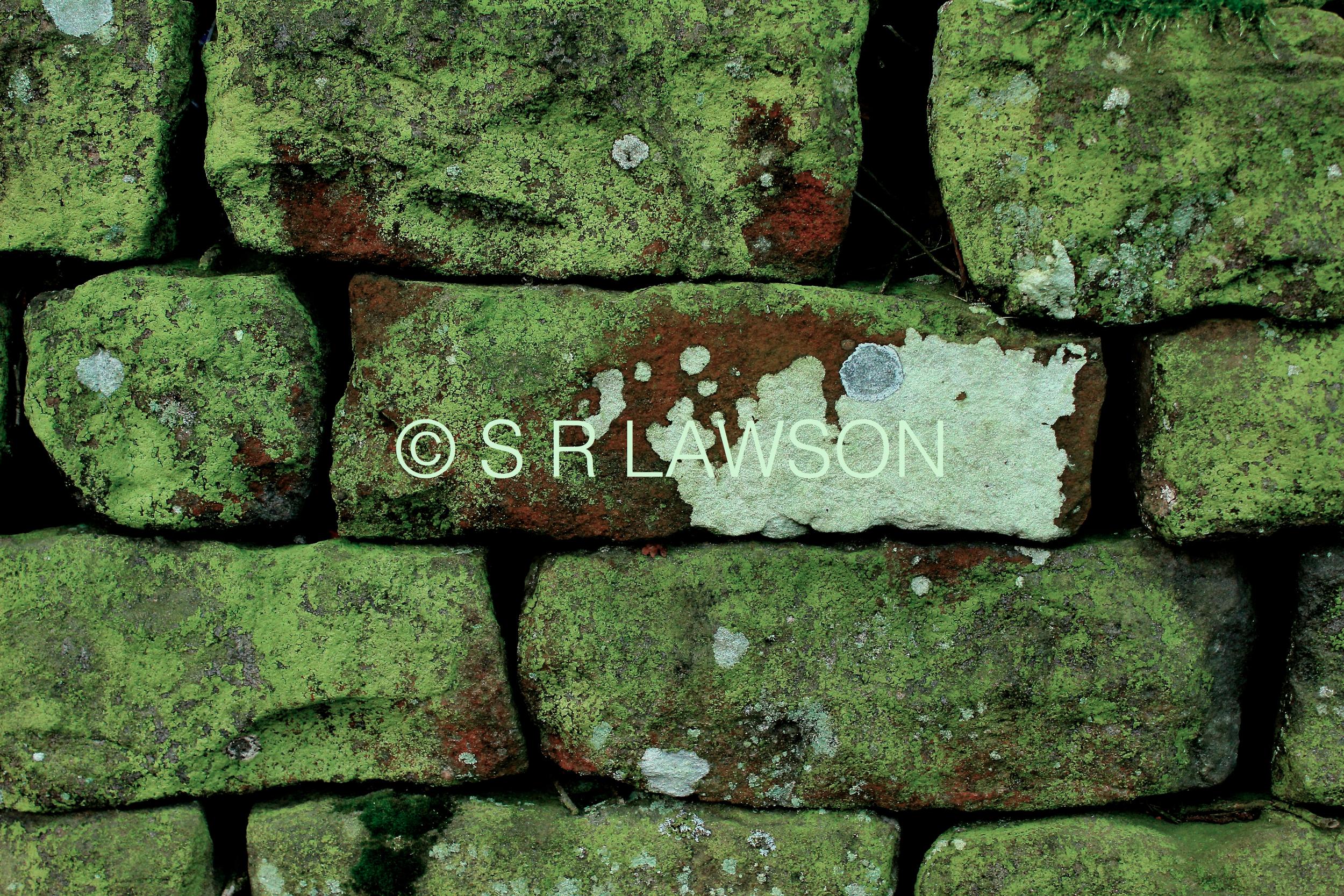 Bricks 2 © small.jpg