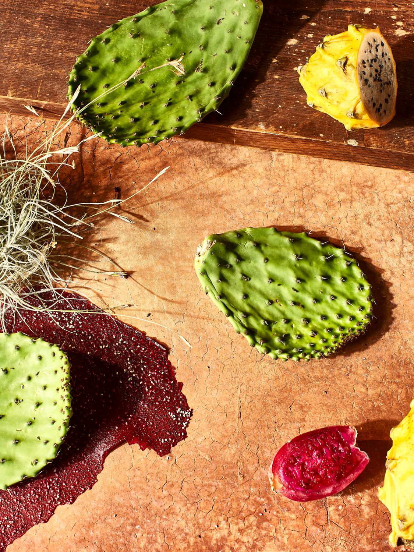 121418_DRGHT_Cactus-346.jpg