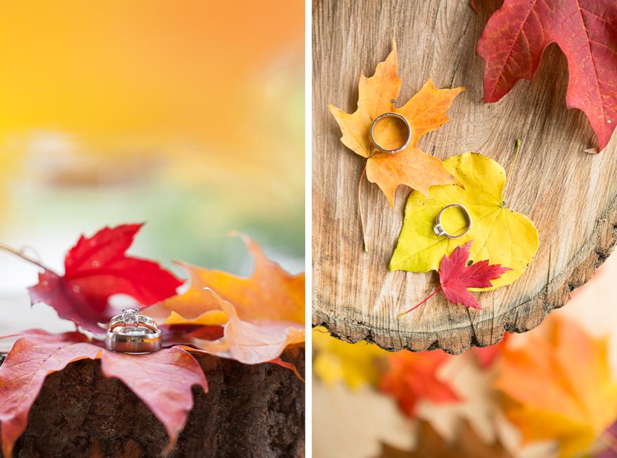 wedding-rings-fall.jpg