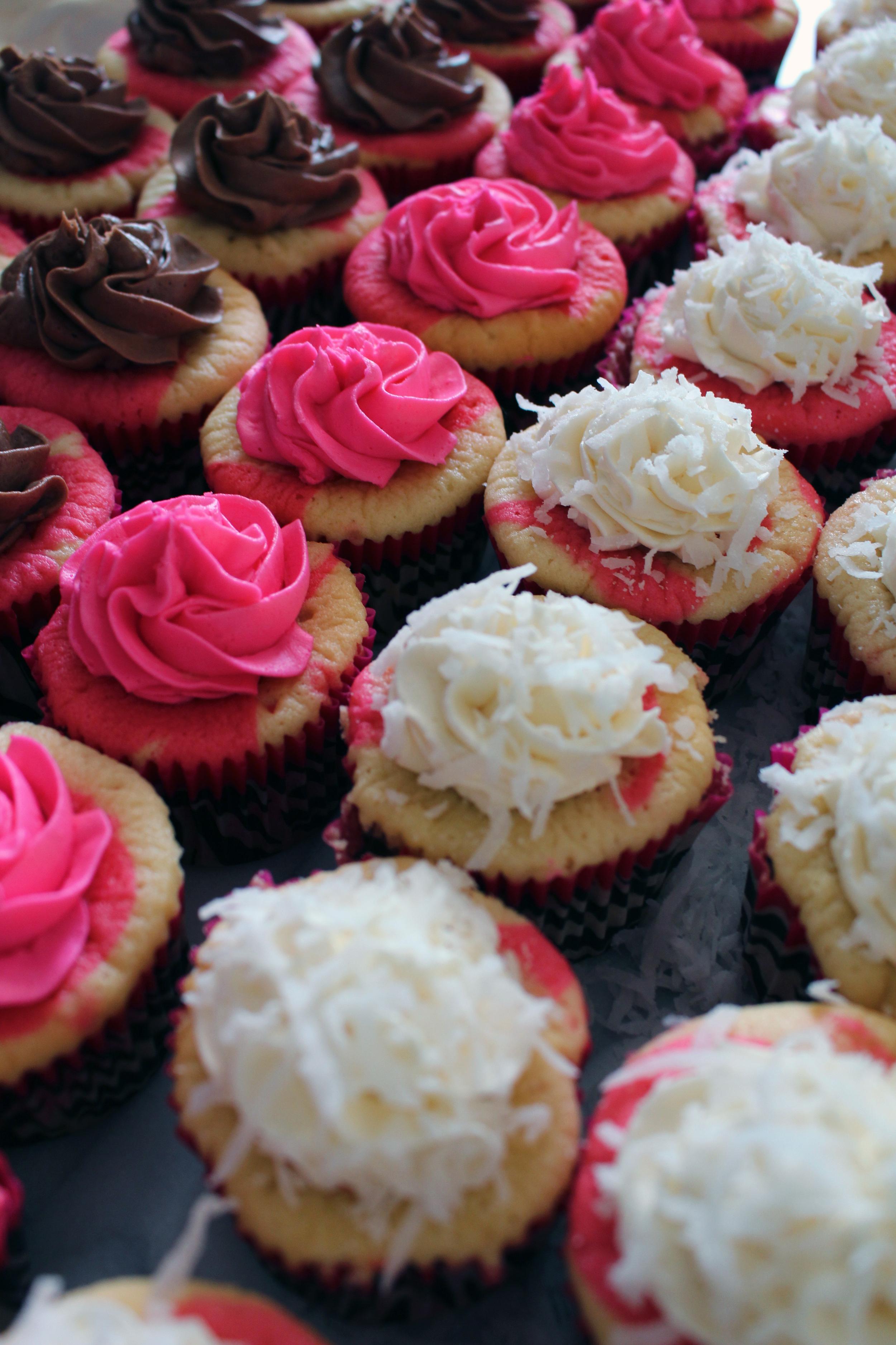 cupcakes iced.jpg