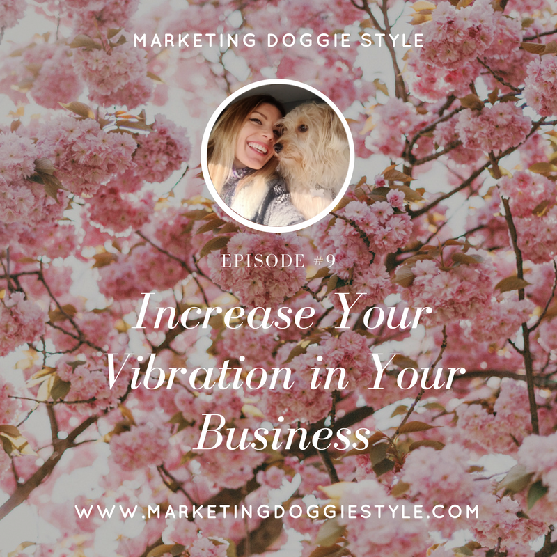 Increase Your Vibration in Your Business
