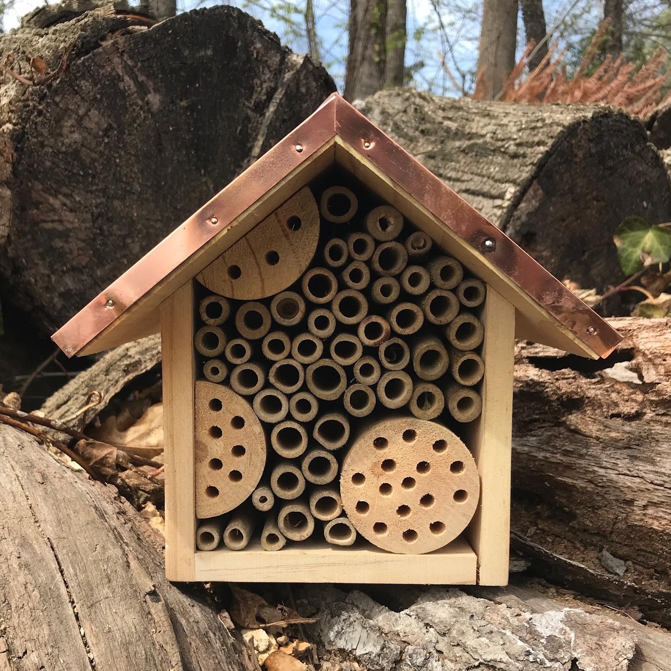 Intreegue's new mason bee house!