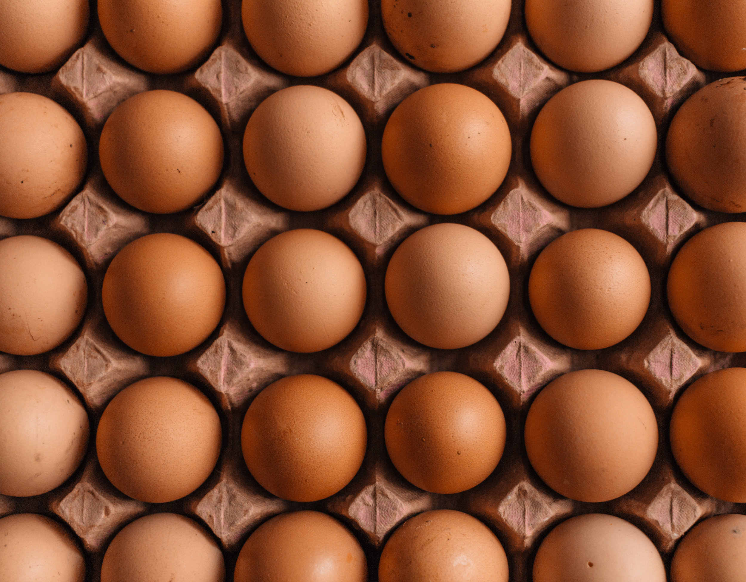 healthy eggs for lean protein