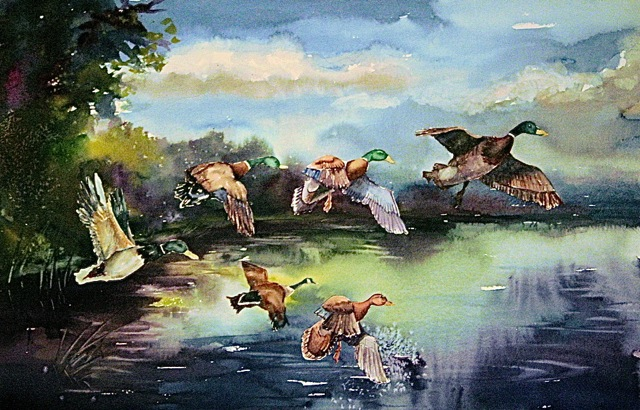 Six Ducks a Flying - 18 x 26 watercolor