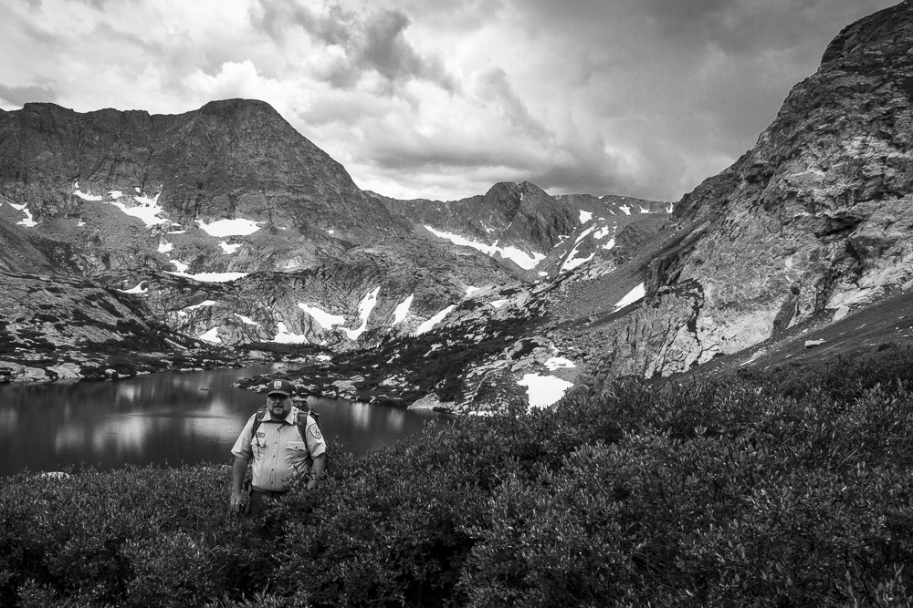 Biologist Chris Kennedy wades through willows above Arrowhead Lake in Colorado's Rocky Mountain National Park.