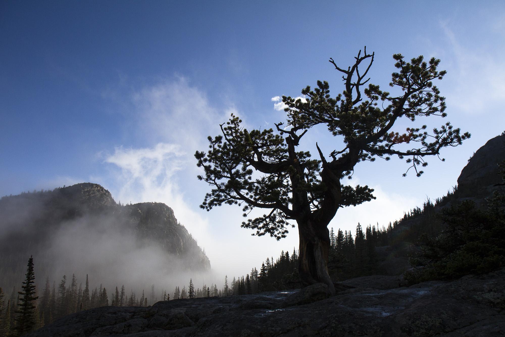 Clearing fog above Glacier Gorge Junction.