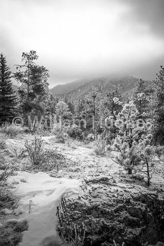 20170203-Glen Haven Frost-002